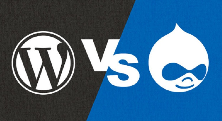 Drupal vs WordPress: Which Among Them is the best CMS?