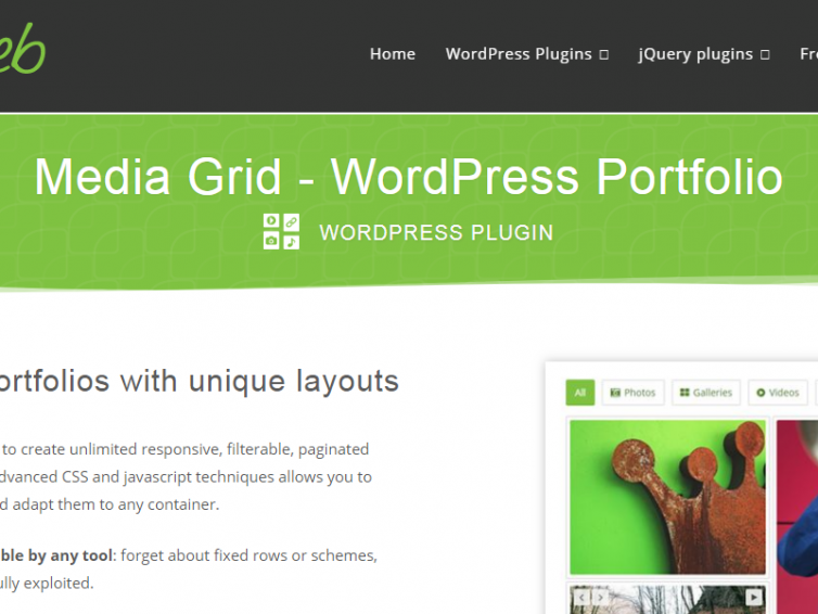 15 Best WordPress Portfolio Plugins