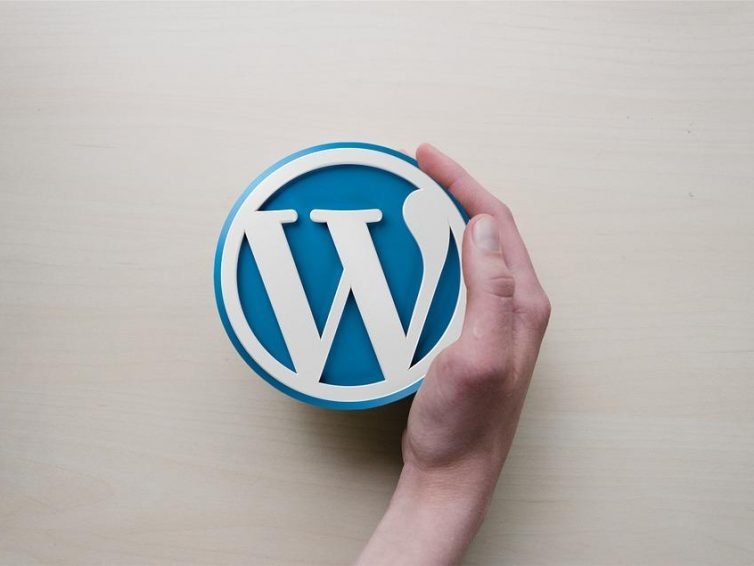 4 Features That Make WordPress the Leading CMS Worldwide